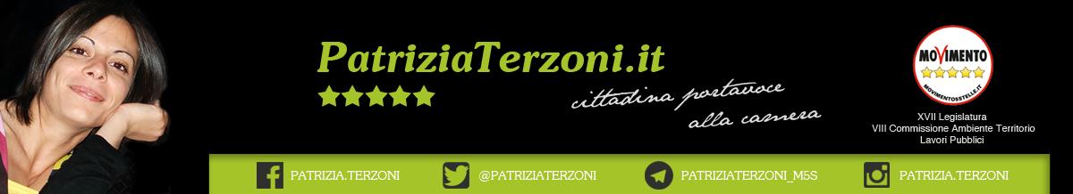 Patrizia Terzoni | Una cittadina in Parlamento