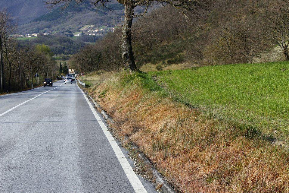 Strada Provinciale su cui è stato utilizzato del diserbante.