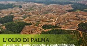 L'olio di palma al centro di mille ricerche e contraddizioni. MA PUOI SCEGLIERE.