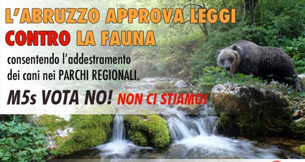 La regione Abruzzo contro la fauna consentendo l'addestramento dei cani nei Parchi Regionali. NON CI STIAMO!