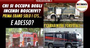 Incendi boschivi: senza CFS a chi tocca? Il governo ci illumini