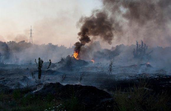TERRA MIA, in arrivo la stretta sui reati ambientali