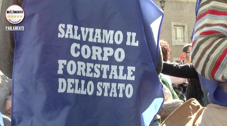 CORPO FORESTALE: NELLE MARCHE NON POSSIAMO FARNE A MENO