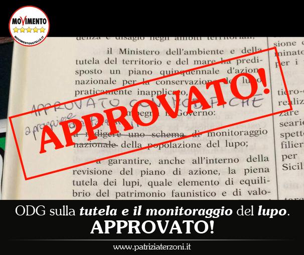 Tutela e monitoraggio lupo: Approvato l'ODG!