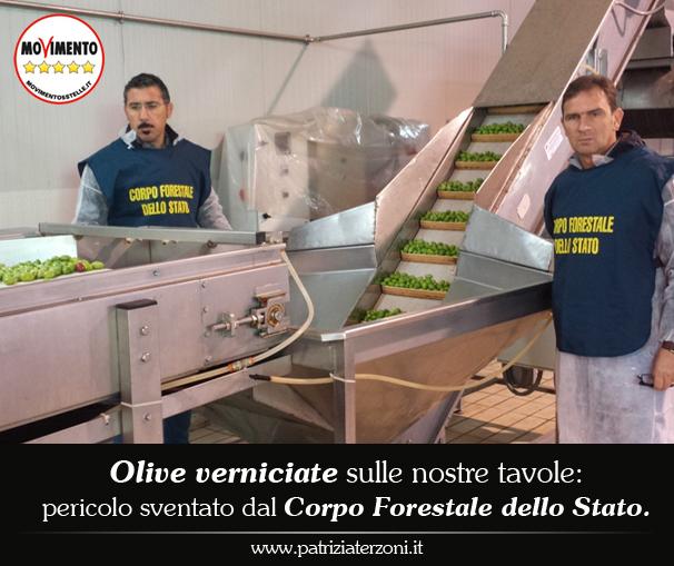 Olive verniciate sulle nostre tavole: pericolo sventato dal CFS.