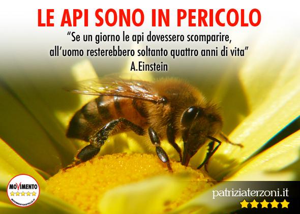 Le api sono in pericolo: M5S chiede lo stop dei pesticidi, ma il governo prende (e perde) tempo…